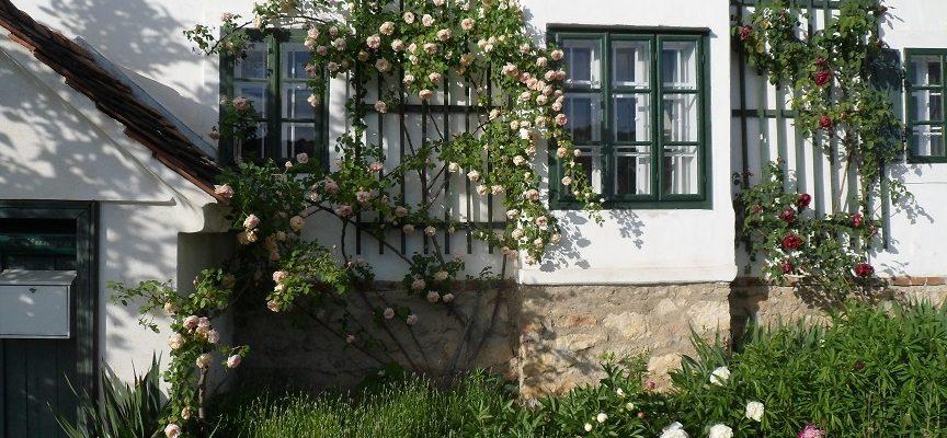 Kunstgarten, Peter Manhal